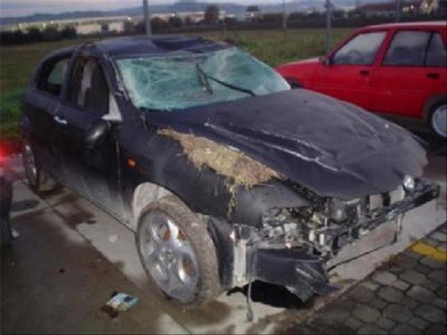 Auto Sinistrate Alfa Romeo 147 1194525