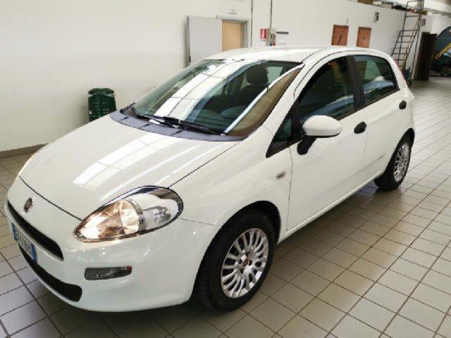 Auto Usate Fiat Punto 1206129