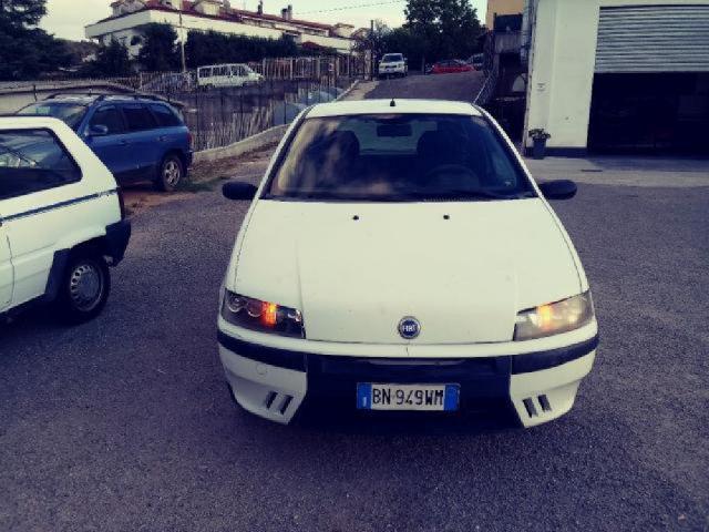 Auto Usate Fiat Punto 1241565