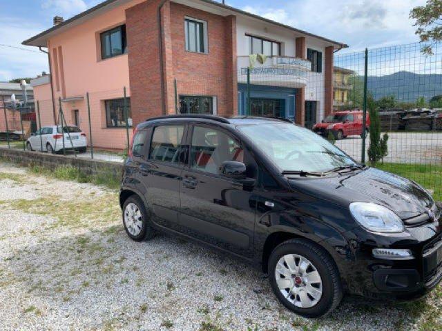 Auto Aziendali Fiat Panda 1246024