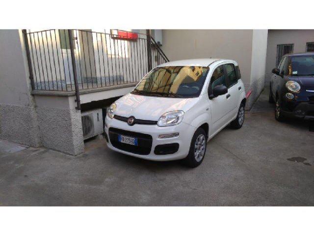 Auto Usate Fiat Panda 1249189